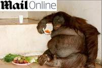 Overgewicht bij dieren