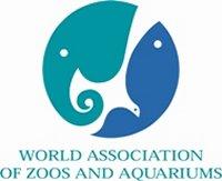 Tsunami en de dierentuin
