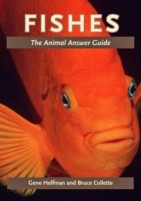 Fishes - the animal answer guide